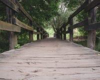 Gammal bro i skogen arkivbilder