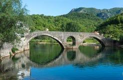 Gammal bro i staden av floden Crnojevic Arkivbilder