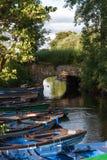 Gammal bro nära Ross Castle Royaltyfri Bild