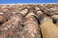 Gammal brun tegelplatta av linjen för tak och för blå himmel, vårtid arkivfoto