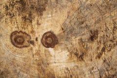 Gammal brun wood vägg Royaltyfri Foto