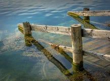 Gammal brygga in i en lugna sjö Royaltyfri Bild