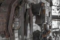 Gammal bryta stadhäst och Sadle Royaltyfri Foto