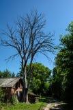 Gammal bussgarage nära det torra döda trädet som lokaliseras i byn arkivfoto