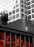Gammal byggnad i den New York City mitten i gata 42 Arkivbilder