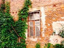 Gammal byggnad med väggen för röd tegelsten Royaltyfri Fotografi