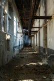 gammal byggnadskorridor Fotografering för Bildbyråer