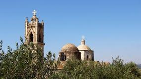Gammal bykyrka med Olive Tree och klockatorn med blå himmel royaltyfri bild