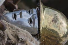 Gammal celtic maskering Arkivbilder