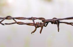 Gammal chain rost med vattendroppar Royaltyfria Bilder