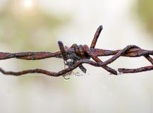 Gammal chain rost med vattendroppar Royaltyfri Fotografi