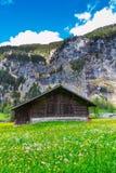 Gammal chalet på grön berglutning schweiziska alps Lauterbrunnen S Royaltyfria Bilder