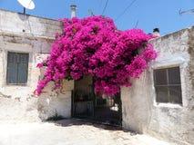 Gammal cityhouse på Kreta Royaltyfria Bilder