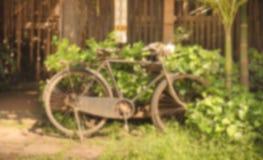 gammal cykel för suddighet i parkera Arkivbilder
