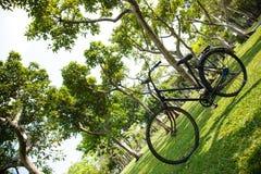 Gammal cykel i parkera. Royaltyfri Foto
