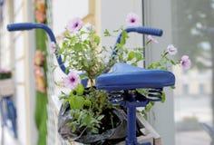 Gammal cykel med blommaasken Arkivbild