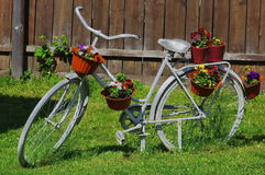 Gammal cykel med blommor Fotografering för Bildbyråer