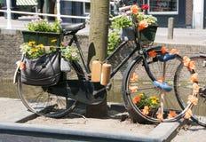 Gammal cykel med blommor och flaskdrinken Royaltyfri Fotografi