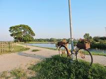 Gammal cykel med blommor på flodkust Arkivbild
