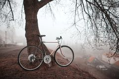 Gammal cykel nära trädet Royaltyfria Foton