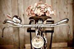 Gammal cykel och blomma Fotografering för Bildbyråer