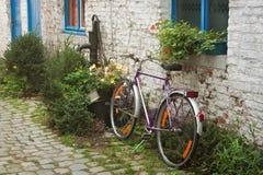Gammal cykel på trädgården royaltyfria foton