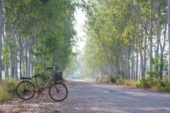 Gammal cykel på vägen Arkivfoto