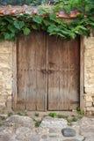Gammal dörr och vinranka på stenväggen Arkivfoton