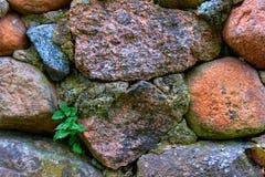 Gammal del för murverkvägg Arkivfoton