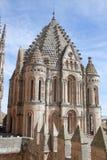 Gammal domkyrka av Salamanca Arkivfoto