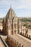 Gammal domkyrka av Salamanca Royaltyfria Foton
