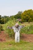 Gammal fågelskrämma Royaltyfri Foto