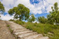 Gammal förstörd konkret trappa med gröna träd och gräs och blått s Arkivbilder