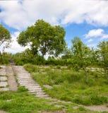 Gammal förstörd konkret trappa med gröna träd och gräs och blått s Arkivbild