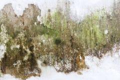 Gammal förstörd och nedfläckad grungy väggtextur Arkivbilder