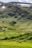 Gammal Fall River väg - nationalpark colorado för stenigt berg Arkivfoto