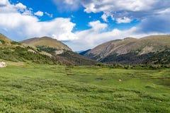Gammal Fall River väg - nationalpark colorado för stenigt berg Arkivfoton