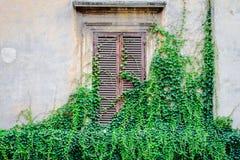gammal fasad i Italien Royaltyfri Fotografi