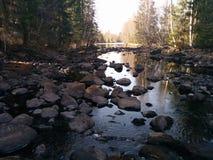 Gammal flod Arkivfoton