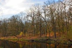 Gammal flod i de reflekterande träden för parkera under sista soliga dagar av nedgången Arkivfoton