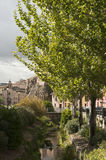 Gammal flod i skinande väder Royaltyfria Bilder