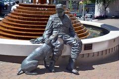 Gammal flyfisherman och hans hund Arkivfoto