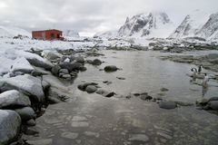 Gammal forskningstation och en koloni av pingvin runt om mountaien Arkivbild
