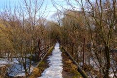 gammal gångare för bro Arkivbilder