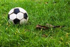 Gammal gräsdagg för fotboll royaltyfri bild
