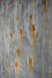 Gammal gräsplanbruntyttersida och betongvägg med rostade fläckar Royaltyfri Foto