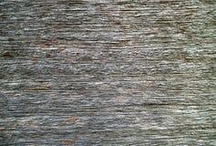 Gammal grå wood texturabstrakt begreppbakgrund Royaltyfria Bilder