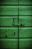 Gammal grön dörr i Dalmatia Fotografering för Bildbyråer