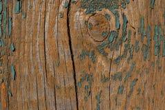 Gammal grön målarfärg på trädet arkivfoto