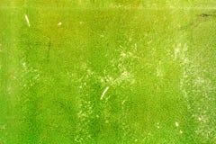 Gammal grön sjaskig pappers- textur med skrapor abstrakt bakgrund Royaltyfri Bild